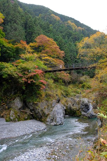 鳩ノ巣小橋のある風景