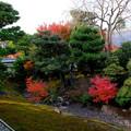 相国寺方丈の庭