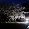 本法寺の夜