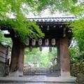 高台寺を出る