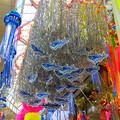 Photos: 阿佐ヶ谷七夕祭り1