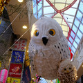 Photos: 阿佐ヶ谷七夕祭り4