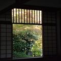 Photos: 「そうだ京都行こうの20年」を読んで/源光庵四角