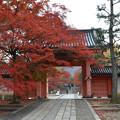 Photos: 20121129山門