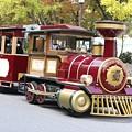 Photos: 公園内を走る汽車?