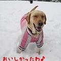 Photos: 満足顔♪