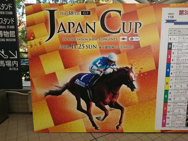 第38回 ジャパンカップ
