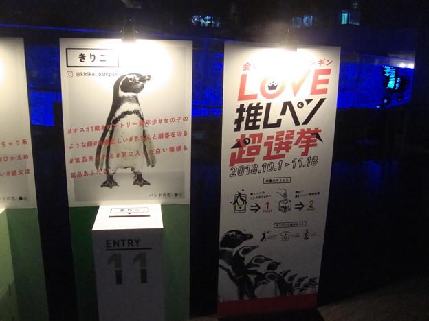 写真: 推しペン選挙