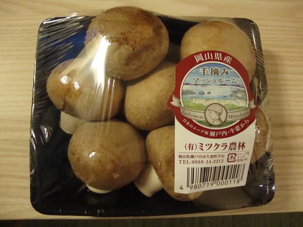 岡山産マッシュルーム
