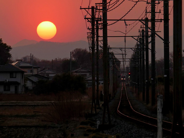 Photos: 大きな夕日と小さな電車