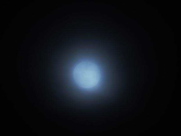 クール系朧月