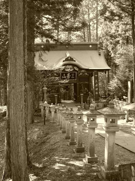 写真: 三峯神社 随身門