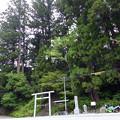 西原の一の宮神社 鳥居
