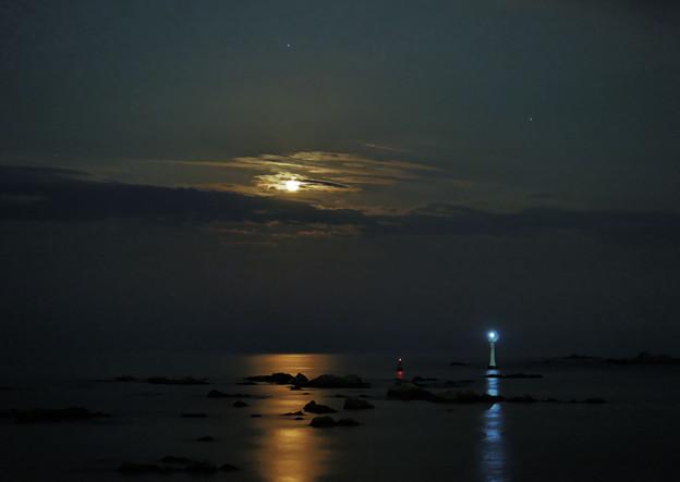 写真: 月夜の海に2