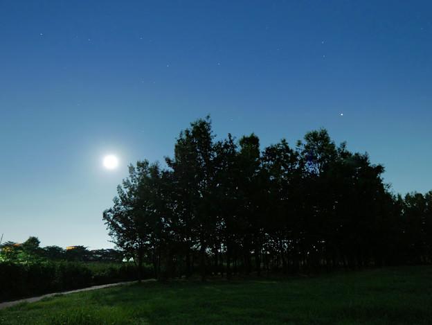 月明かり VS 火星明かり