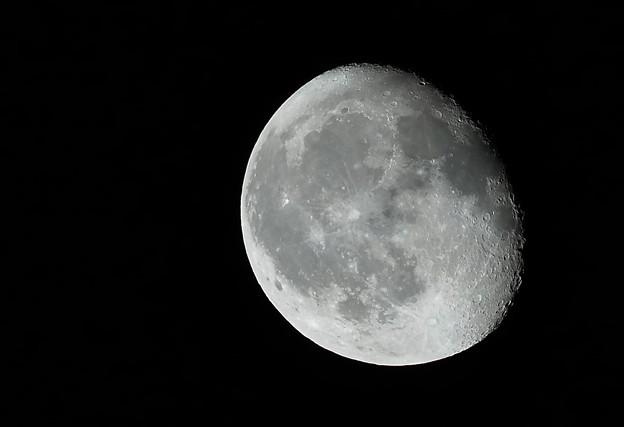 月齢18.5