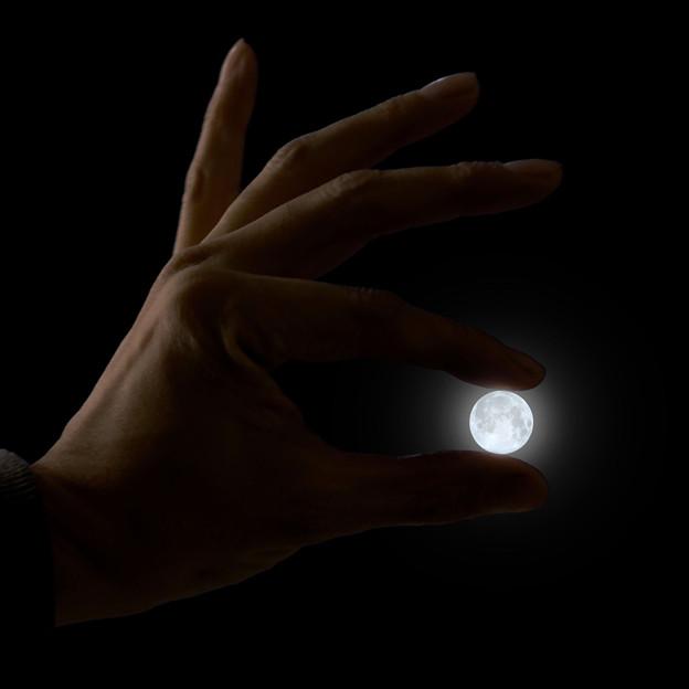 お月さま、大きいなぁ!(笑)