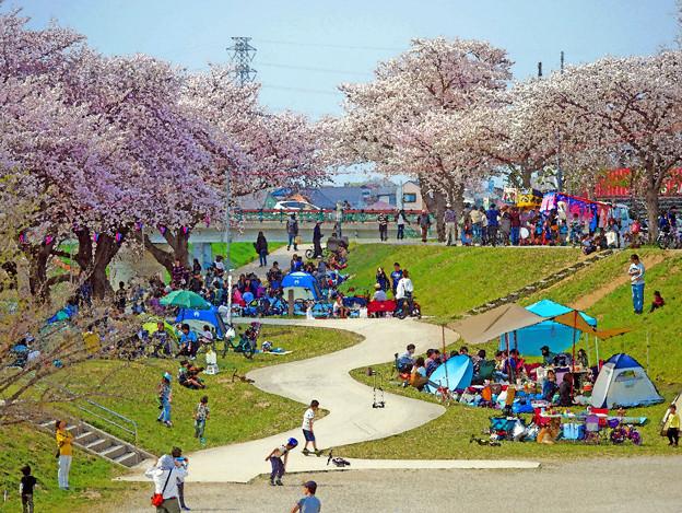 春の公園の休日