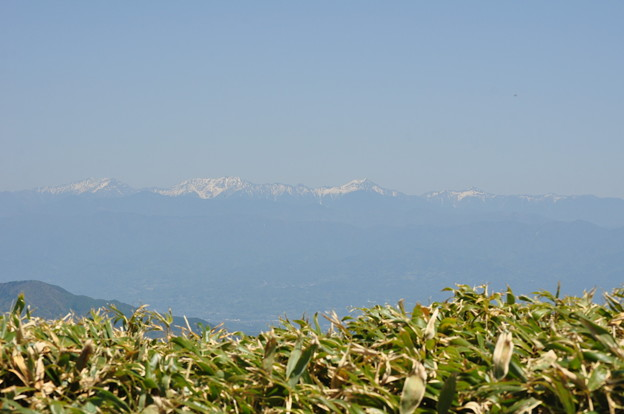 GW  富士見台高原より南アルプス