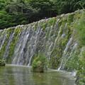 写真: 明神の滝