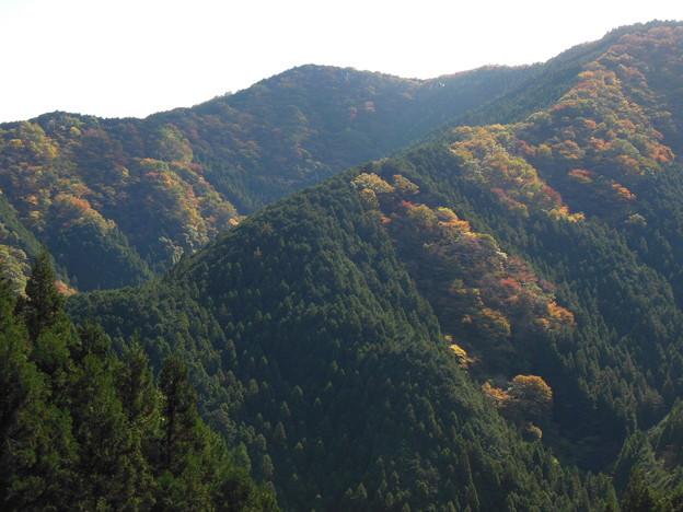 紅葉狩のはずが 2 錦の山