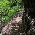Photos: 5月5日の山のぼり~♪1 細い道