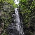 Photos: 5月5日の山のぼり~♪3 滝