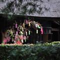 Photos: 七夕と古民家