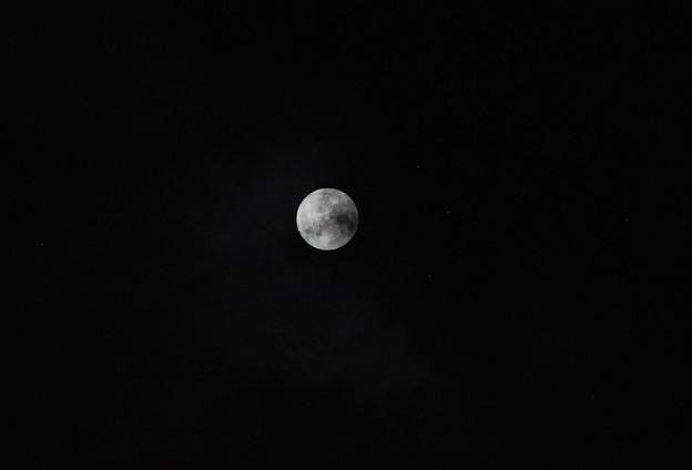 Photos: 出た出た月が♪