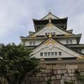 見上げた大阪城♪