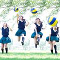 写真: 排球