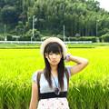 Photos: 緑風