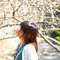 Photos: 春一番