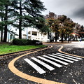 Photos: 駒沢公園
