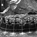 写真: 九頭の龍神水