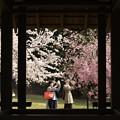 Photos: 春色撮りのふたり