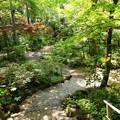 Photos: 初夏の香り漂う庭園