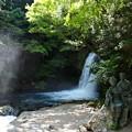 写真: 初景滝の「踊り子と私」