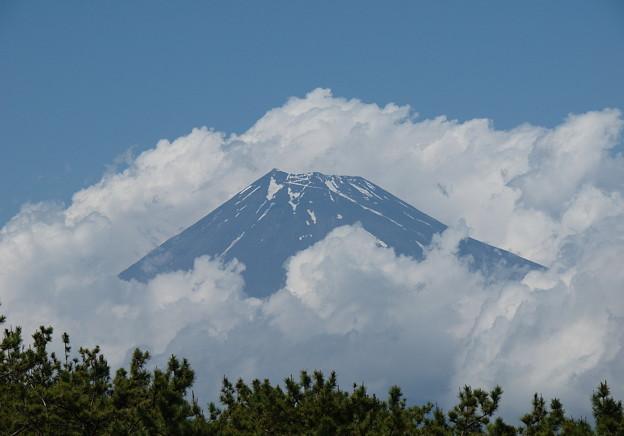 雲に覆われた富士の山