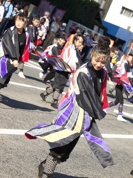三島サンバ~どこかしらよさこい節の舞い
