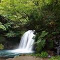 Photos: 秋の日の初景滝