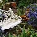 秋花に囲まれたベンチ