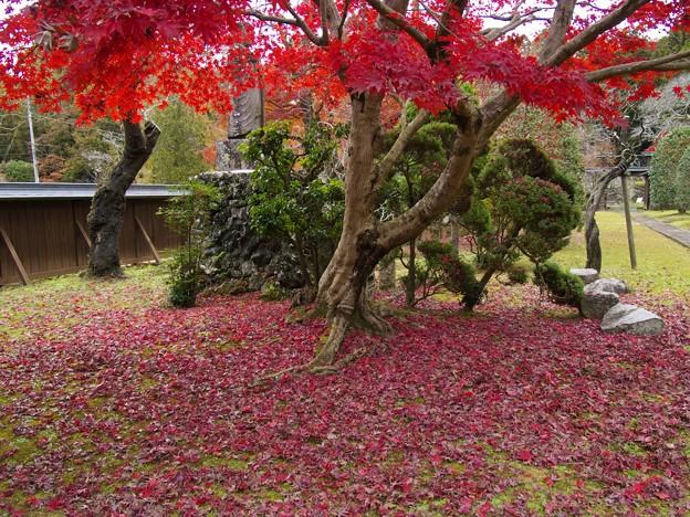 晩秋の山寺~地上に舞い降りた秋色たち
