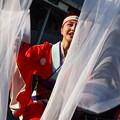 よさこい東海道2018~羽衣の舞い