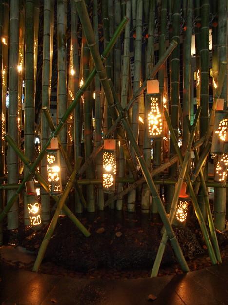 今年も灯った、みしま竹あかり
