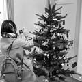 西洋館のクリスマス2018~山手111番館 -c