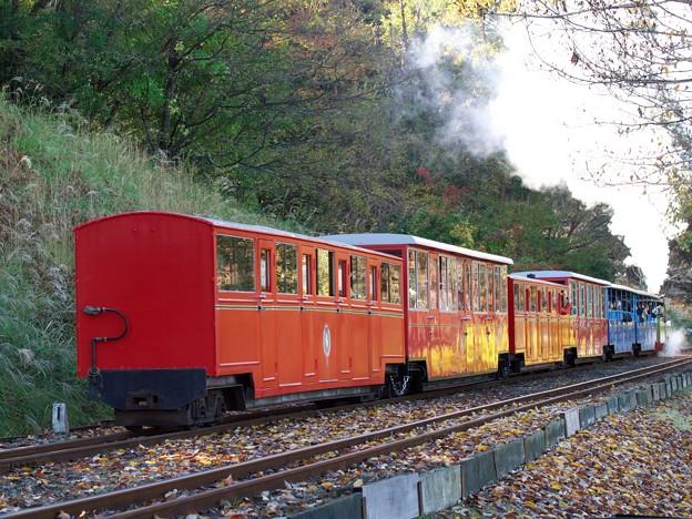 走り去るロムニー鉄道