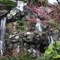 小さな小さな滝と紅梅