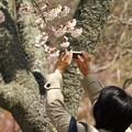 春の陽射しでパシャ~