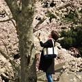Photos: 春と向かい合う